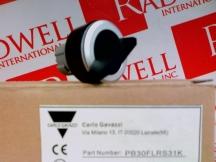 CARLO GAVAZZI PB30FLRS31K